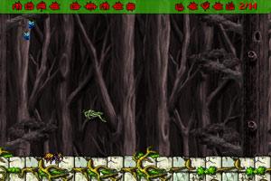 《蜘蛛的生活》游戏画面1