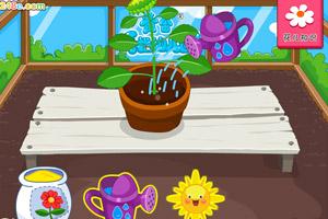 《黄金花园》游戏画面1