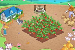 《我的开心农场》游戏画面1