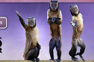 《欢乐的三只小猴》游戏画面1