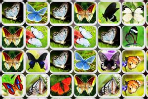 《蝴蝶连连看2012》游戏画面1