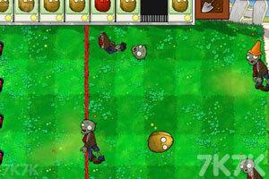 《植物大战僵尸变态版》游戏画面6