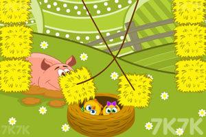 《拯救小鸡》游戏画面9