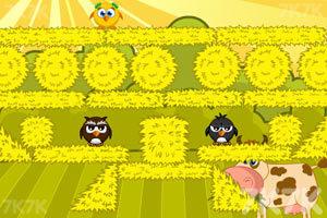 《拯救小鸡》游戏画面10