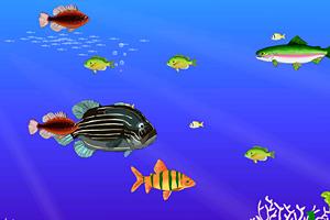 《双人版大鱼吃小鱼》截图1