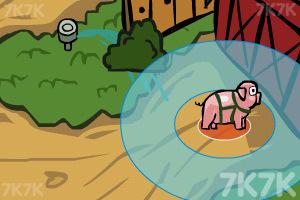 《宠物猪宝宝》截图4
