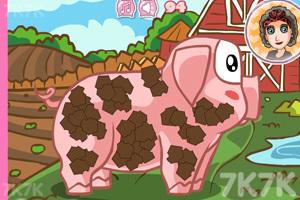 《照顾宠物猪》游戏画面2