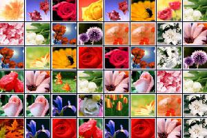 《花儿连连看》截图1