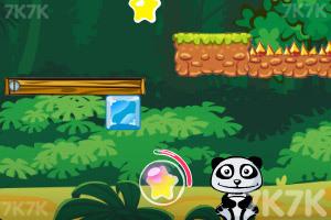《小熊猫吃橘子》截图5