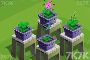 《赞德拉的花园》游戏画面2