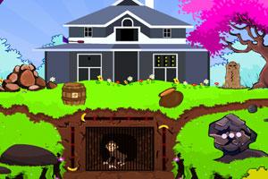 《顽皮猴子花园逃脱》游戏画面1