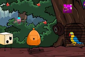 《彩虹鹦鹉逃脱》游戏画面1
