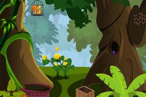 《救出笼中的松鼠》游戏画面1