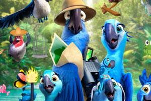 《小鹦鹉大冒险》游戏画面1