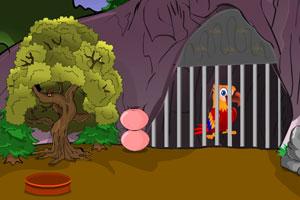 《彩色鹦鹉逃脱》游戏画面1