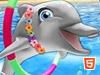 魅力海豚展8