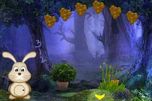 《失踪女王森林逃脱》游戏画面1
