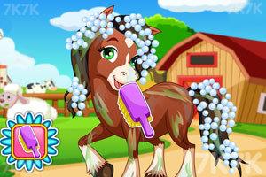 《可爱小马的妩媚造型2》游戏画面3