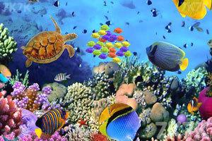 《海底营救热带鱼》游戏画面2