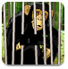 竹林救猴子逃脱