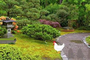 《逃离日本花园》游戏画面1