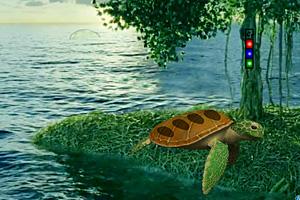 《神秘热带岛屿逃脱》游戏画面1