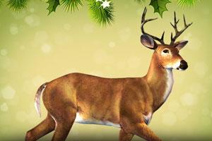 《小鹿逃出古堡3》游戏画面1