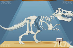 《组装恐龙标本》游戏画面7