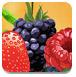 五彩水果对对碰