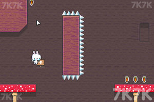 《萌兔爱吃胡萝卜》游戏画面2