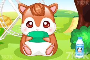 《我的仓鼠宝宝》游戏画面3
