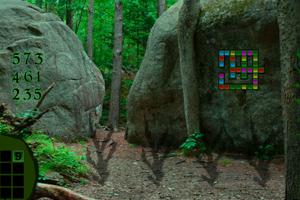 《逃离热带雨林》游戏画面1