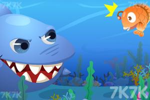 《梦幻大鱼吃小鱼》游戏画面1
