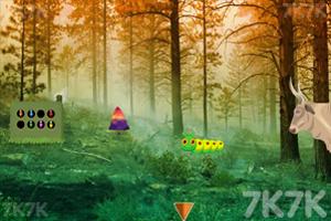 《逃离森林火灾现场》截图3