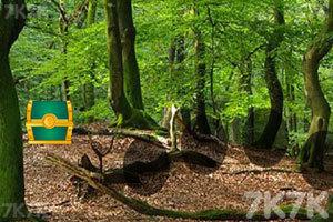 《后院森林逃生》截图2