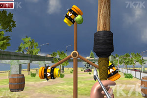 《精准射箭》游戏画面2