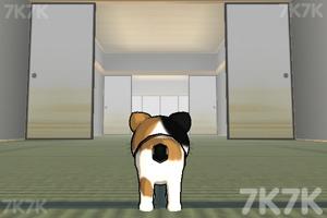 《小猫跳一跳》游戏画面1