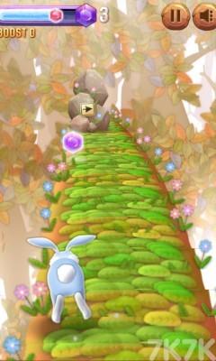 《小兔快跑》游戏画面4