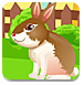 被网住的兔子逃脱