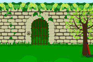 逃离花园迷宫